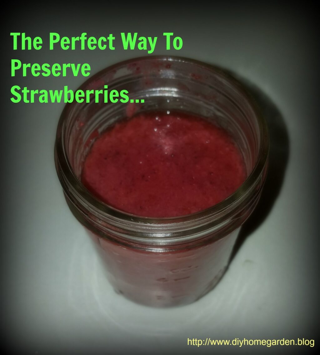 Freeze Strawberry Puree Today So You Can Enjoy the Berry Good Sweetness All Year!