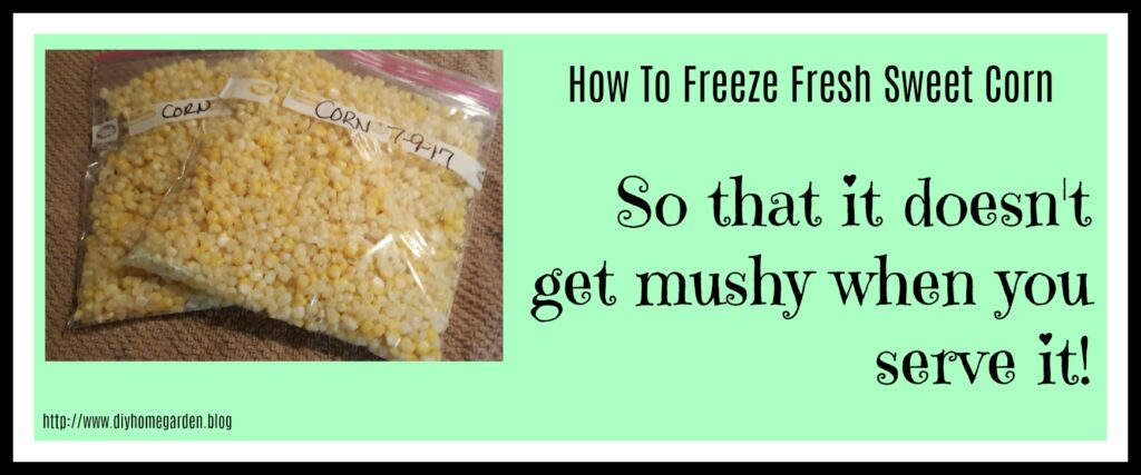 How To Freeze Sweet Corn Without It Getting Mushy!