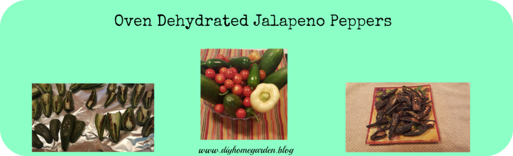 Oven Dehydrate Jalapeno Peppers An Easy Way To Preserve