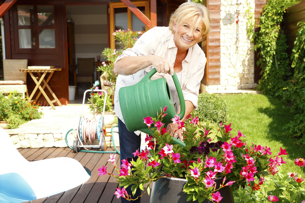 How To Properly Water Your Garden