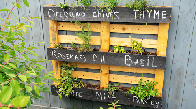 How to Transform Old Wooden Pallets into Vertical Gardens