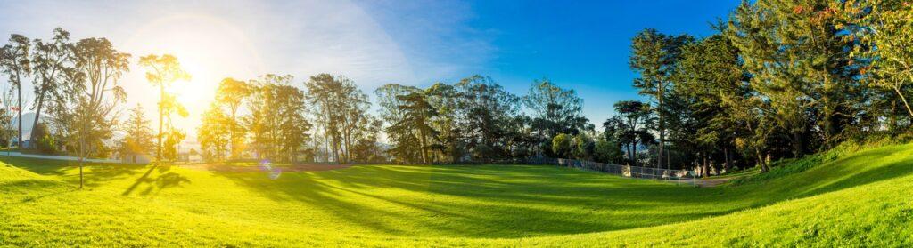 Make a Million Dollar Backyard on a Budget