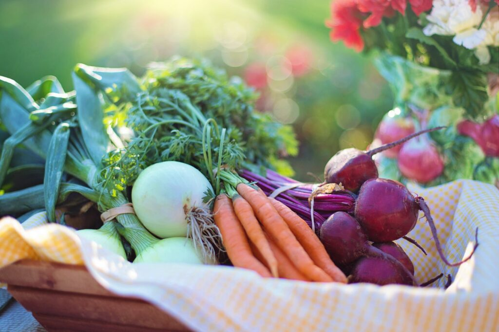 6 Vegetables to Plant in Your Fall Garden