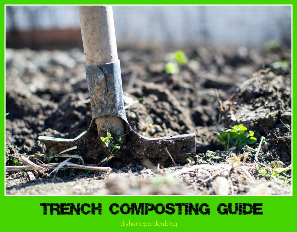 Trench Composting Guide