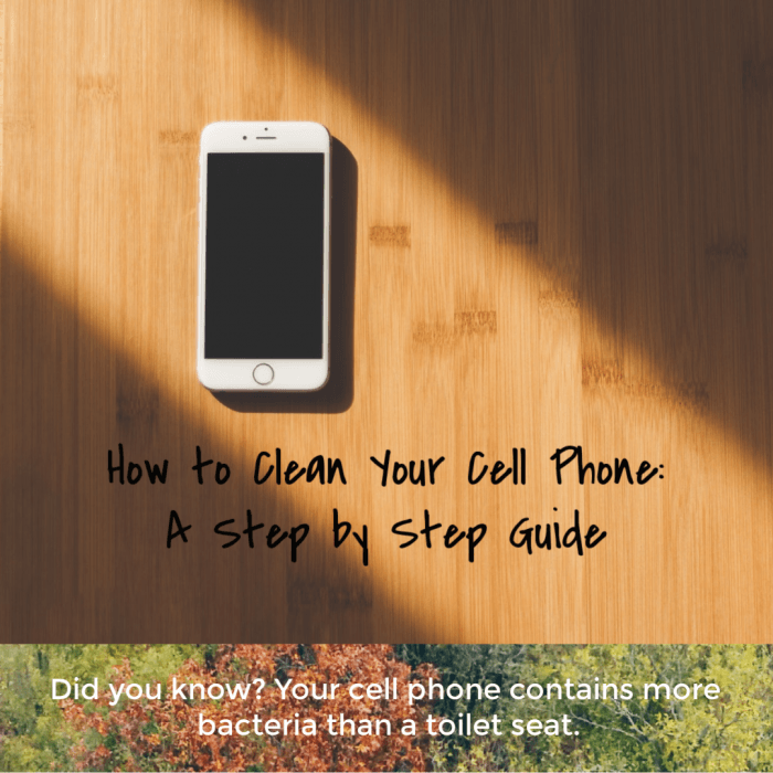 Step by Step to a Clean Cell Phone