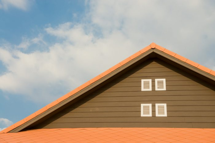 Want an Environmentally Friendly Roof? Here are some options.
