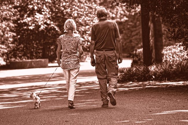 Taking Care of Your Health While Walking Your Dog