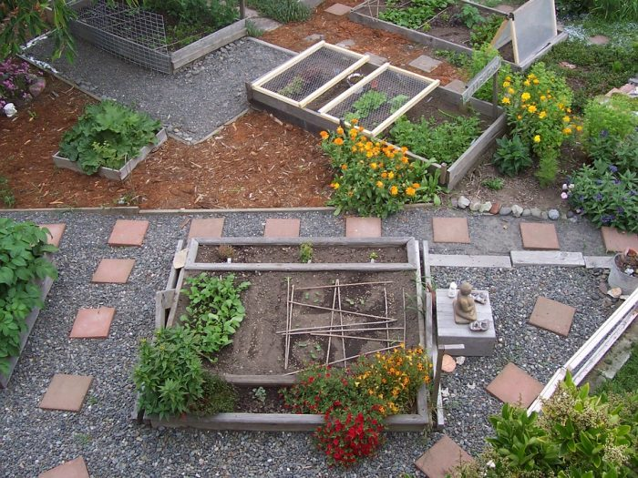 How to Plant an Urban Garden