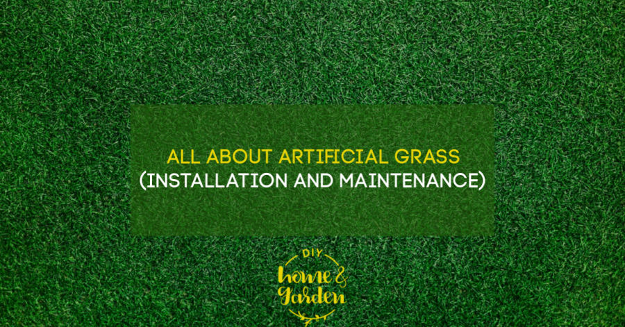 All About Artificial Grass (Installation and Maintenance)