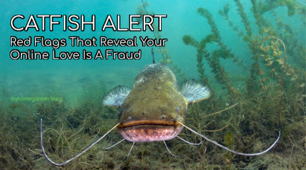 Catfish Alert! Red Flags That Reveal Your Online Love is a Fraud
