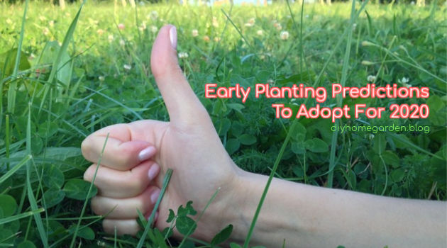 Early Planting Predictions To Adopt For 2020