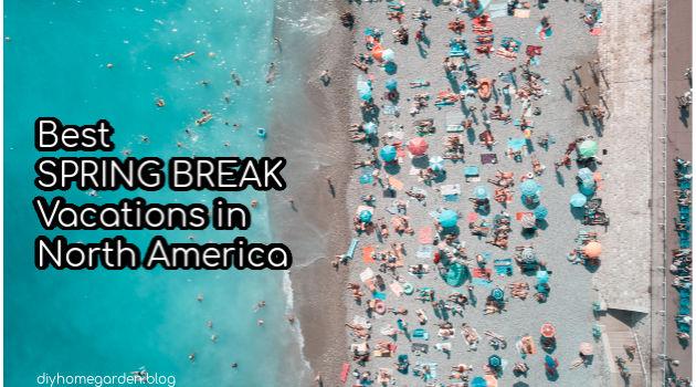 Best Spring Break Vacations in North America