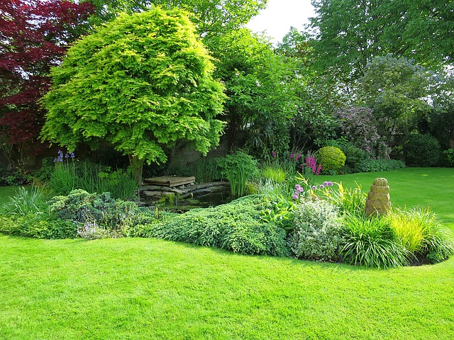 Eliminate These 5 Threats to Your Garden