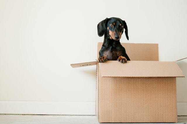 4 Home Moving Hacks Everyone Should Know