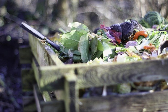 Composting: A Quick Get Started Guide
