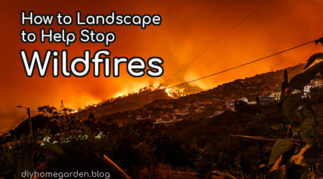 How to Landscape to Help Stop Wildfires