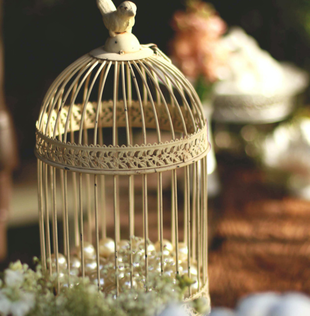 How to Use Birdcages in Your Home Décor