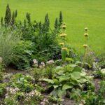 garden dangers