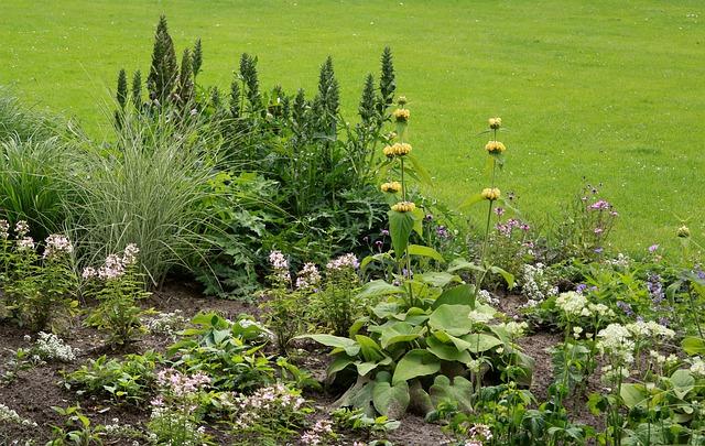 Four Garden Dangers Never to Overlook