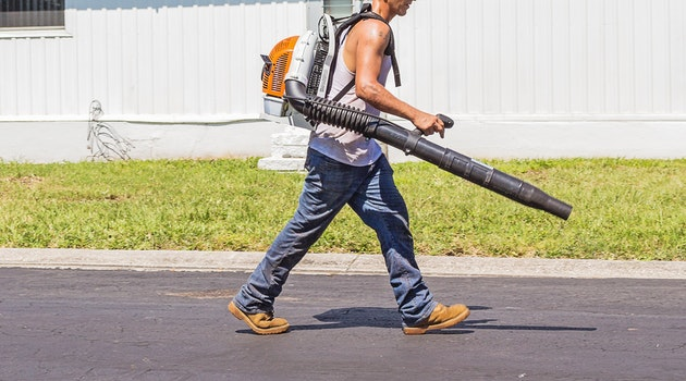 Should You Buy a Leaf Blower or Vacuum?
