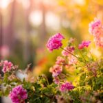 update your garden