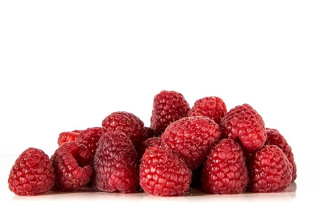 Raspberry Bushes: A Care and Growing Guide