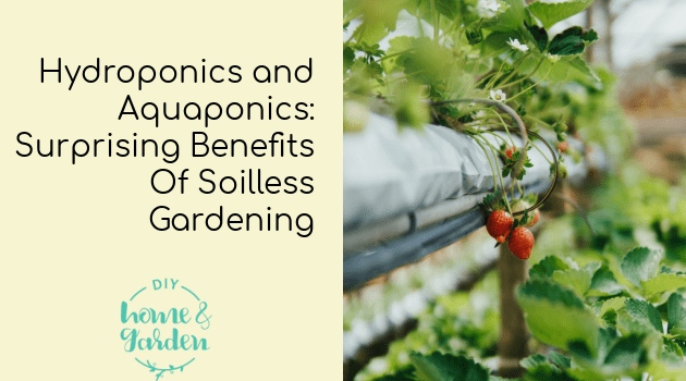 Hydroponics and Aquaponics: Surprising Benefits Of Soilless Gardening