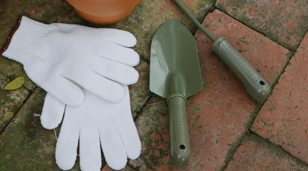 4 Tips to Keep a Tidy Garden All Year Long