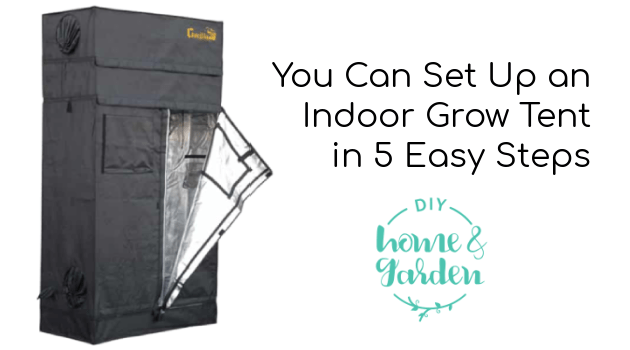You Can Set Up an Indoor Grow Tent in 5 Easy Steps