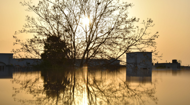 9 Ways to Spot Water Damage in Your House