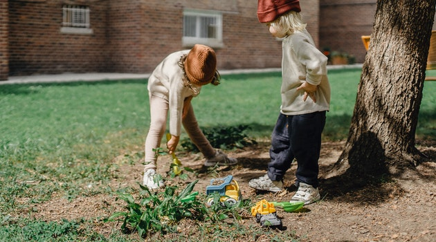 4 Easy Ways To Update Your Garden On A Budget