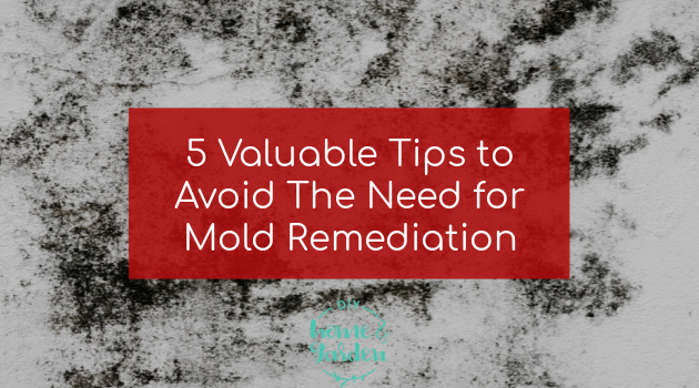 5 Valuable Tips to Avoid The Need for Mold Remediation