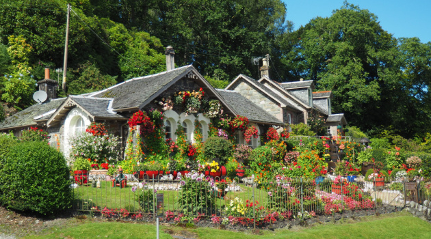 3 Easy Tips for Creating Definition in Your Gorgeous Garden