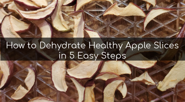 How to Dehydrate Healthy Apple Slices in 5 Easy Steps