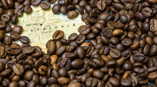 The Cultural Tradition of Ethiopian Coffee