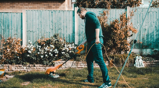 5 Effortless Ways to Make Your Yard Look Better