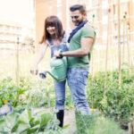 start an urban garden