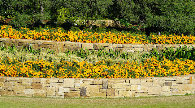 3 Convincing Reasons to Install a Tiered Garden in Your Yard